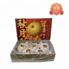 Exclusive Yantai Large Pear 7pc/box