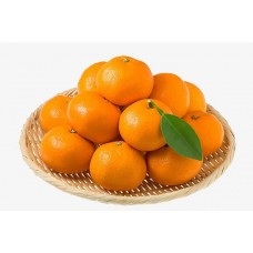 (On sale) Small Mandarin 0.99/lb