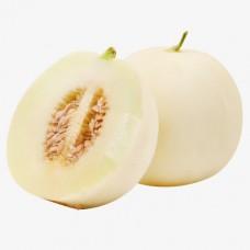 Honey Dre Melon - white (average 2.5lb/ea. )