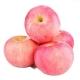 15pc Fuji Apples