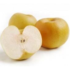 Asian Pear 4pc