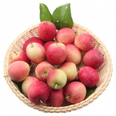 1 Bag of Begonia Apples (about 1.5-2lb)