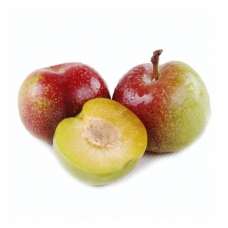 6 Green Plums (about 1lb)