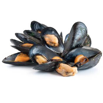 Fresh Mussel 2lb