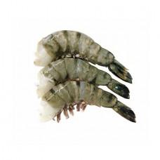 Tiger Shrimp 13-15