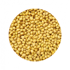 Bulk Small Soy Beans(about 2-2.5lb)