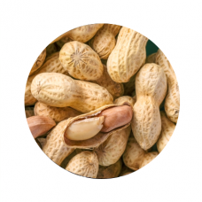 Bulk Dry Peanuts In Shell(about 1-1.5lb)