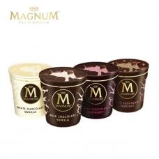 Magnum Ice Cream 14.8fl oz