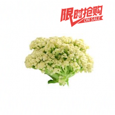 Chinese Culiflower (Average 3lb/ea)