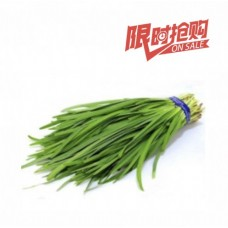 Chinese Flat Chives (0.8 lb.)