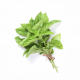 1 Pack of Basil (about 0.15lb)